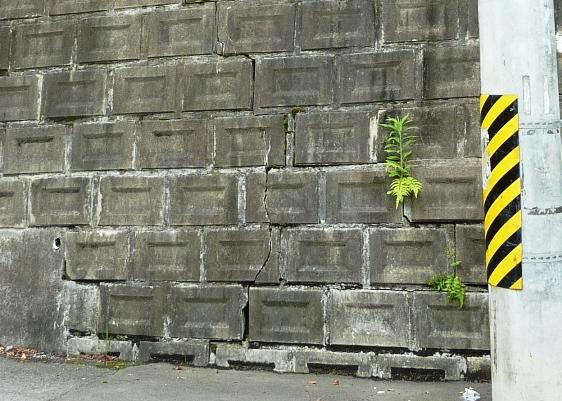 北山3丁目擁壁の亀裂140630
