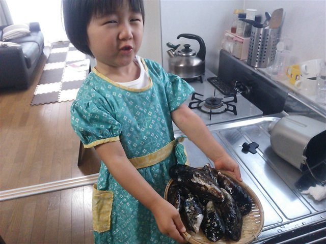 シュウリ貝