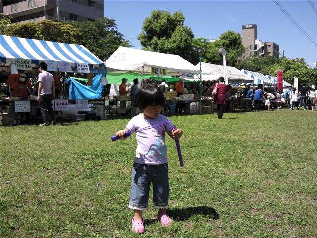 南江戸川祭り