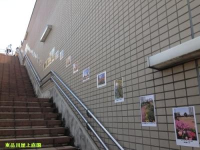 kamera1(1)