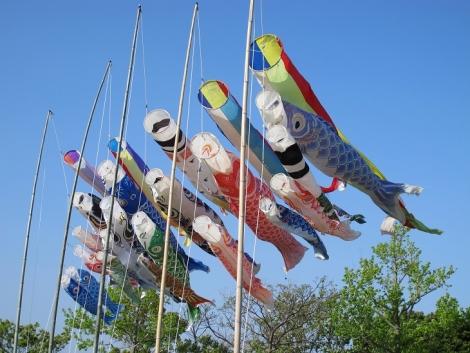浜名湖花博 鯉のぼり