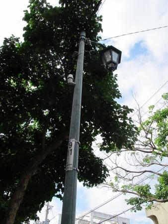 石垣島 街灯