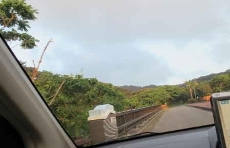 石垣島 バンナ岳
