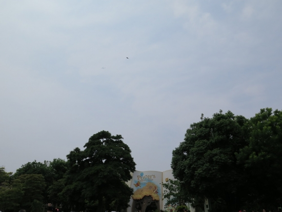 ディズニーランド 鳥と飛行機