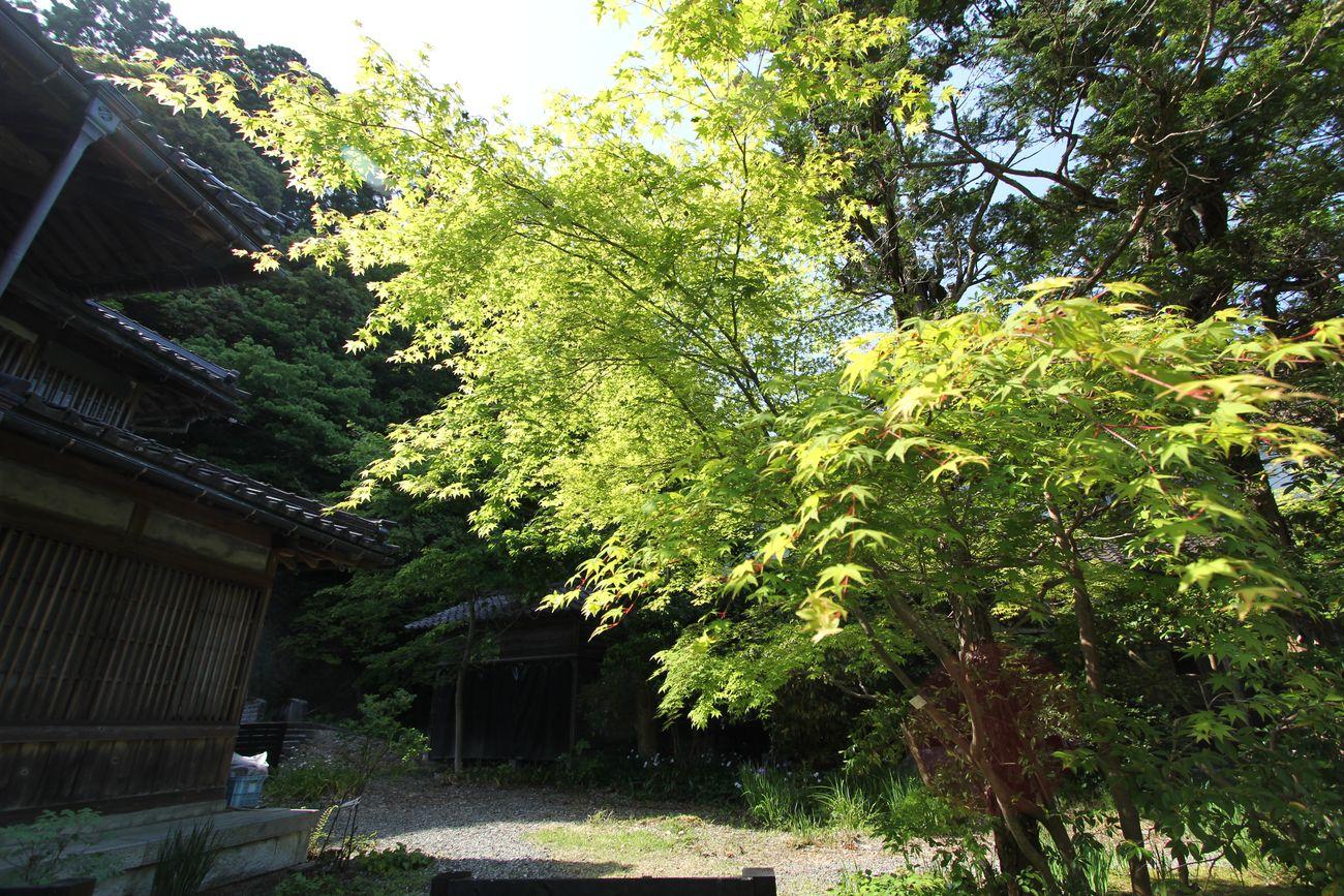 2014・5・18中野邸_145●S