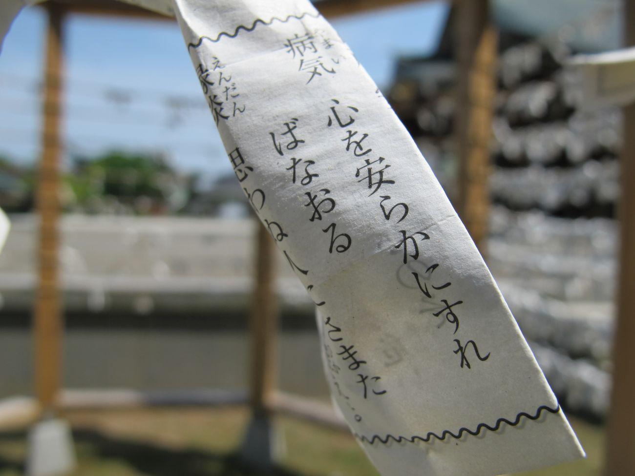 2014・5・30新大護国_32●S
