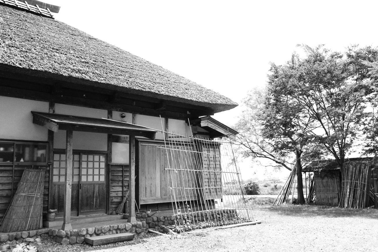 2014・6・23福島潟_58モノクロ●S