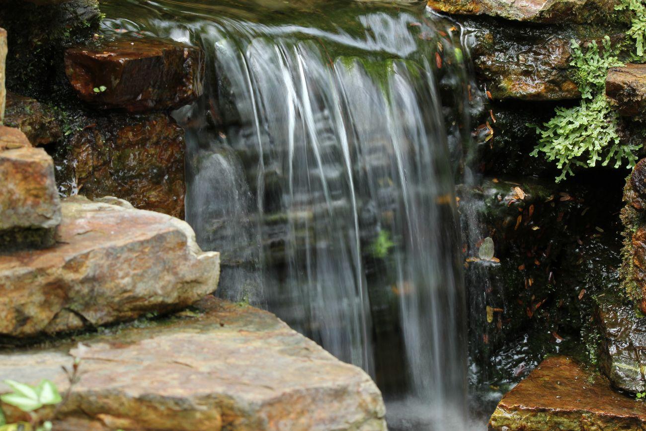 ●S2014・7・17園滝_59