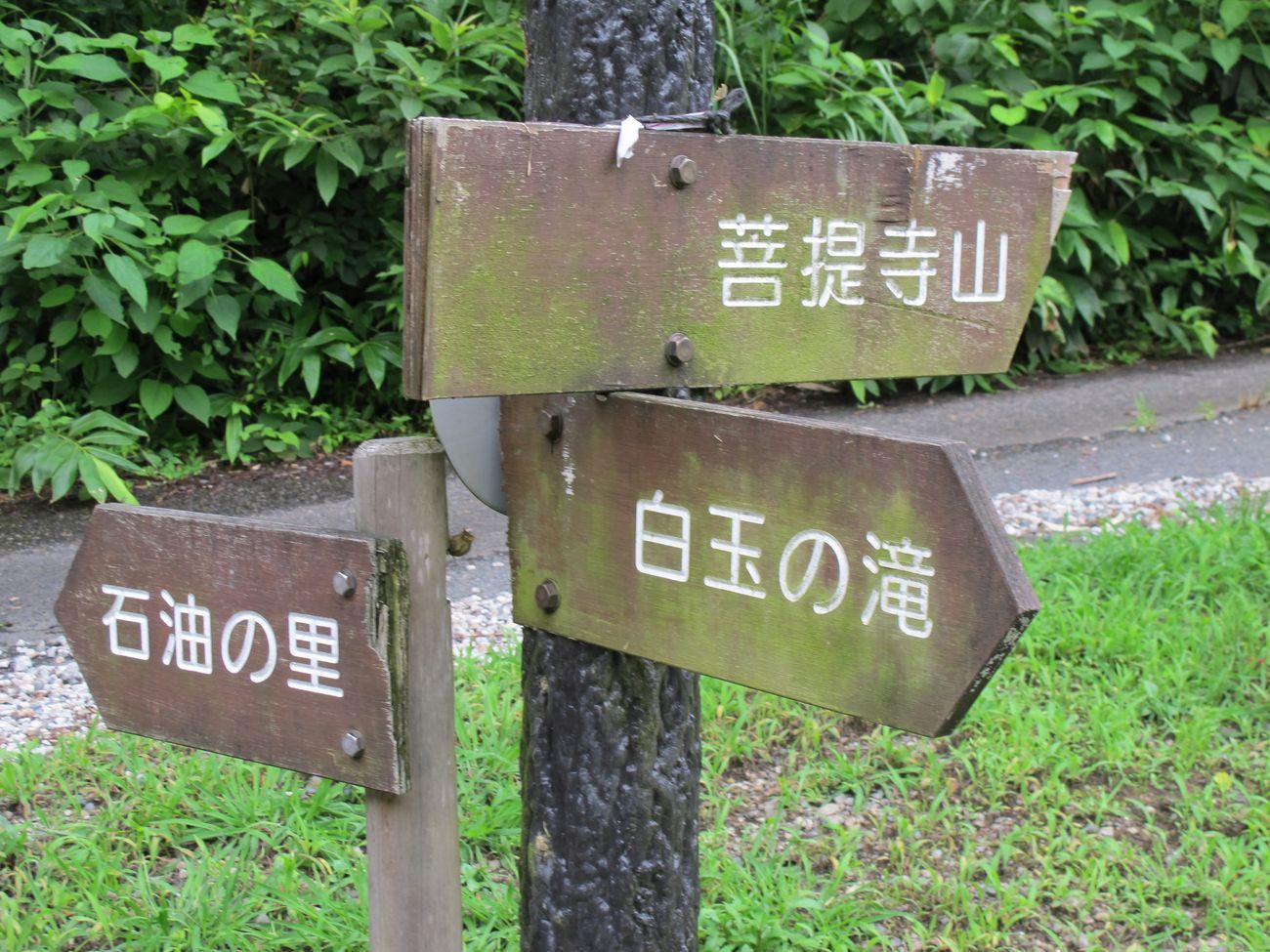 ●S2014・7・17園滝G_09
