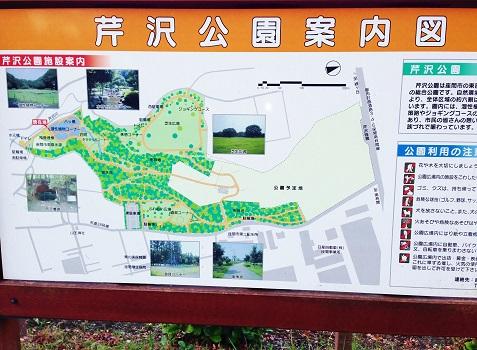 芹沢公園①