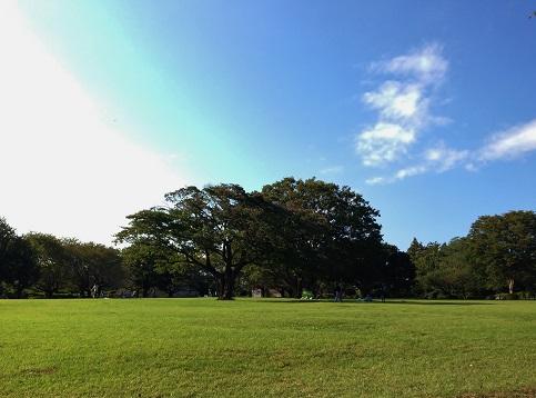 芹沢公園⑦