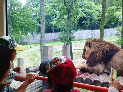 多摩動物公園②