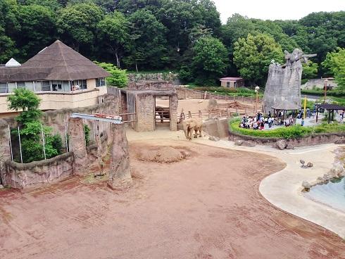 多摩動物公園⑧