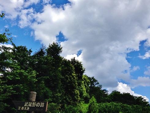 野山北公園⑦