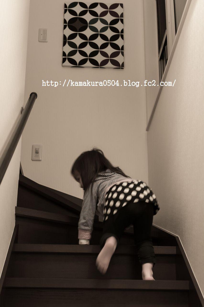 DSC_4028LR_blog_20140202_3518_2.jpg
