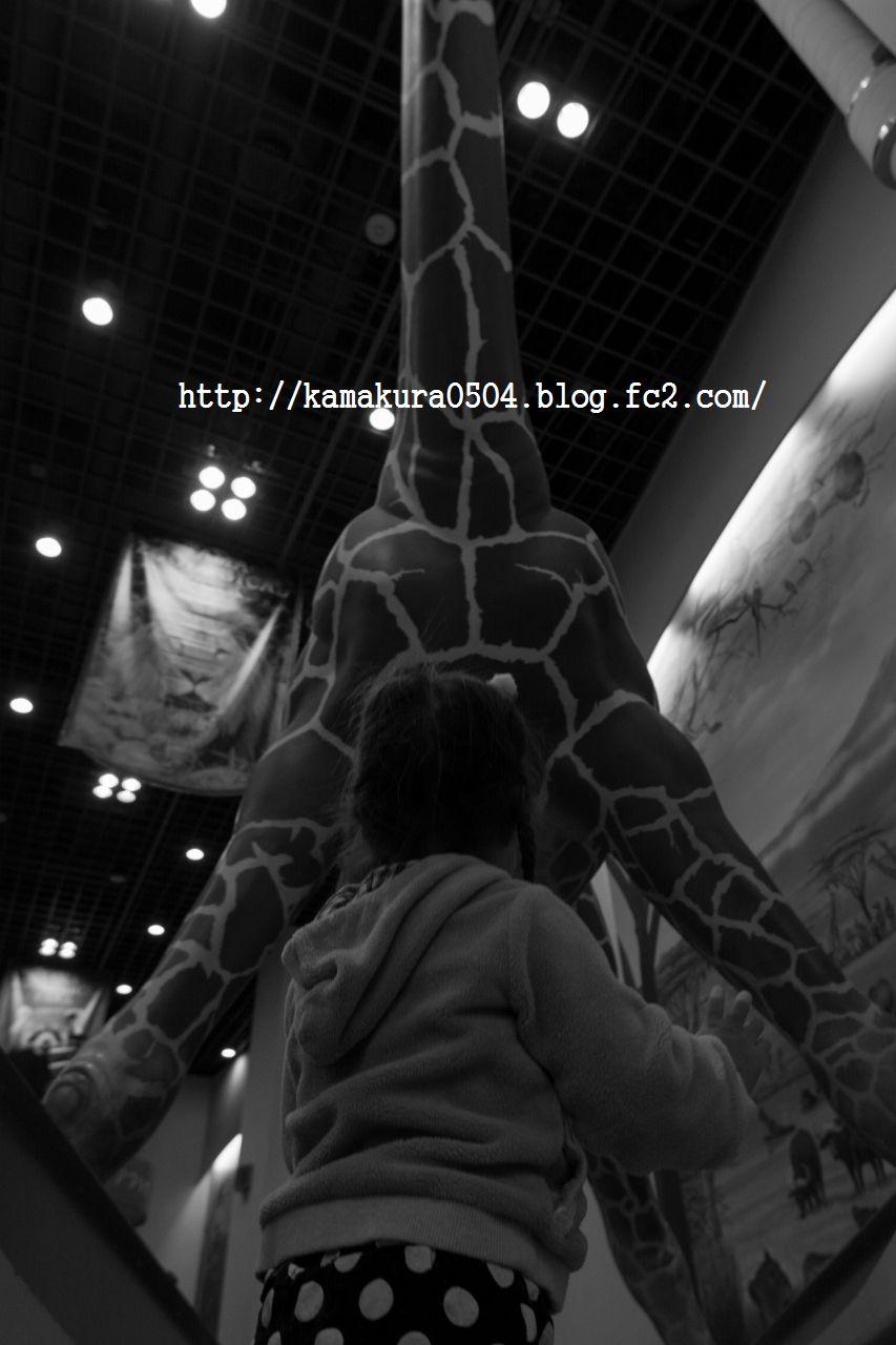DSC_5368LR_blog_20140222_21635.jpg