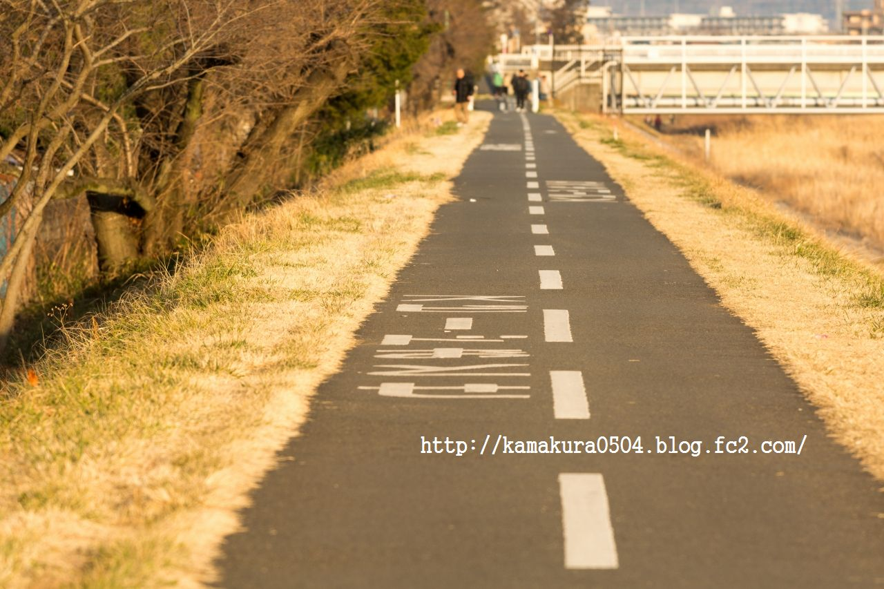 DSC_7050LR_blog_20140316_70200.jpg