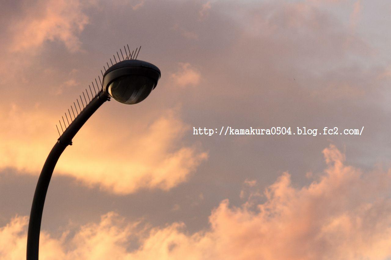 DSC_8304LR_blog_20140404_6028.jpg