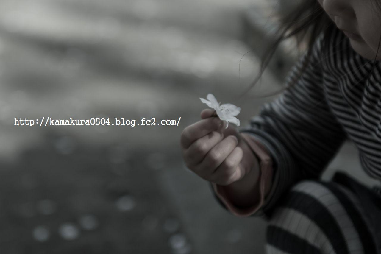 DSC_8744LR_blog_20140405_24-70.jpg