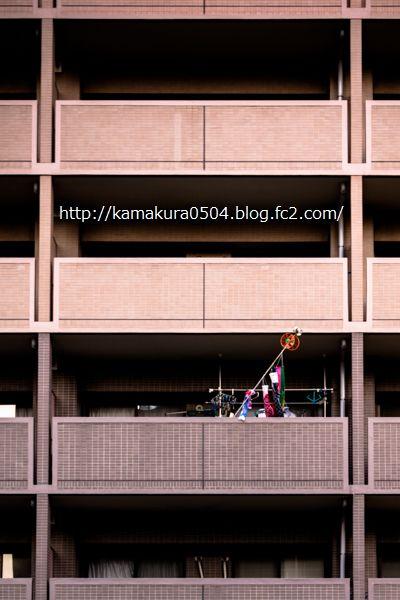 DSC_9744LR_weblog_20140417_16-35_3.jpg
