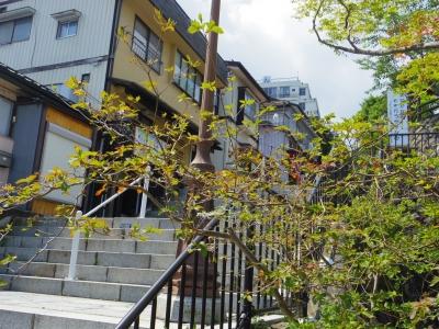 伊香保石段街7
