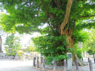 勝福寺12