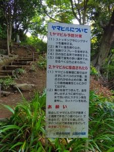 長谷寺(飯山観音)15