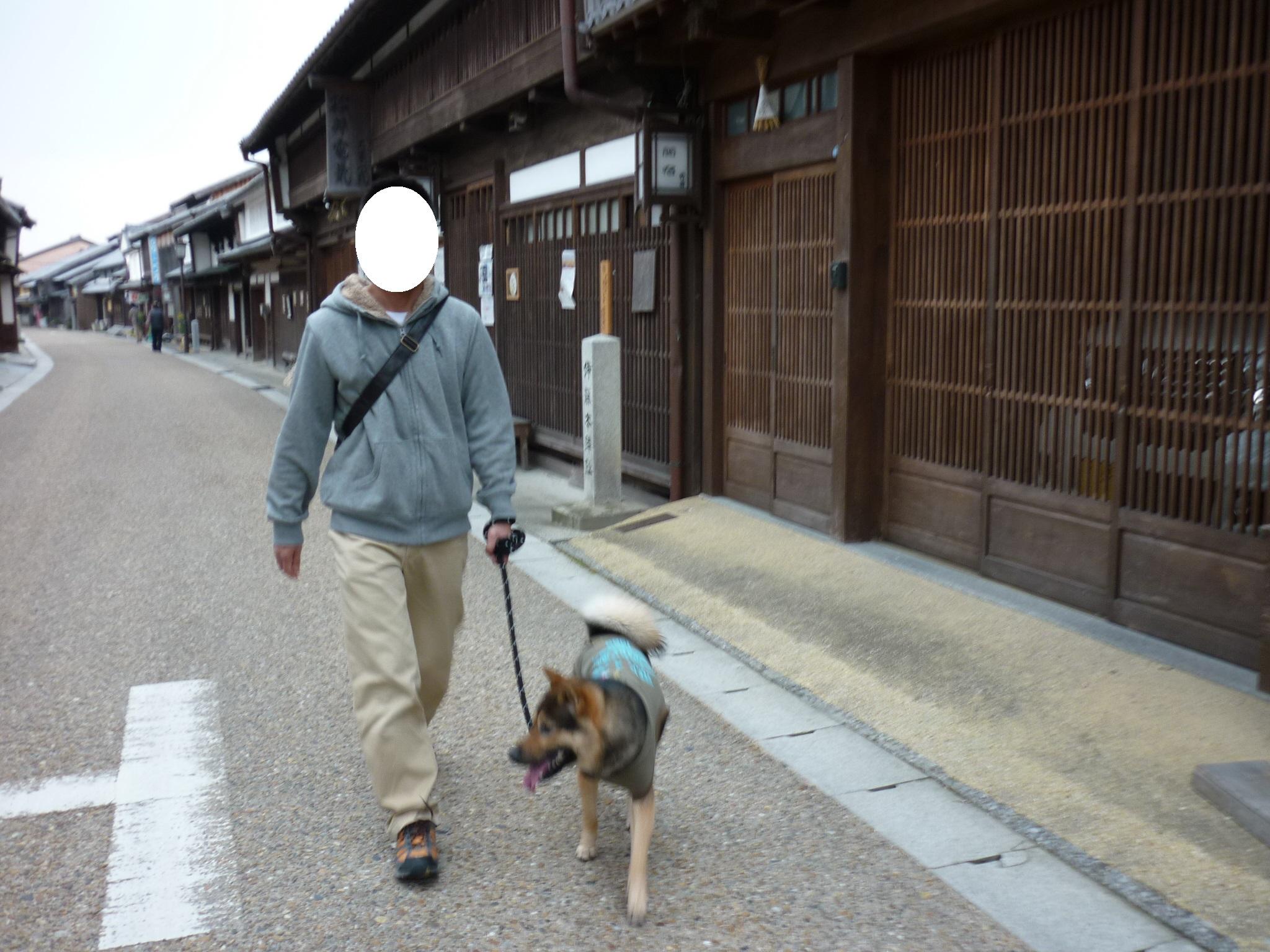 201403関宿-11