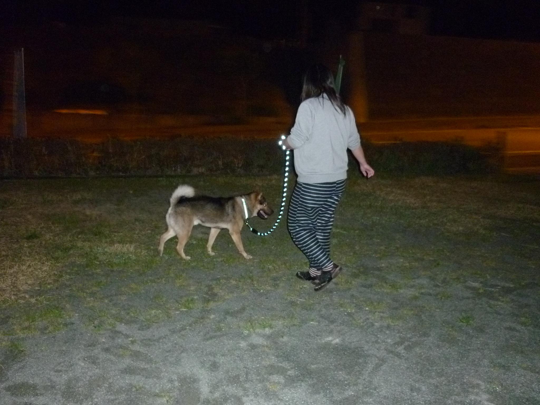 20140403夜散歩05