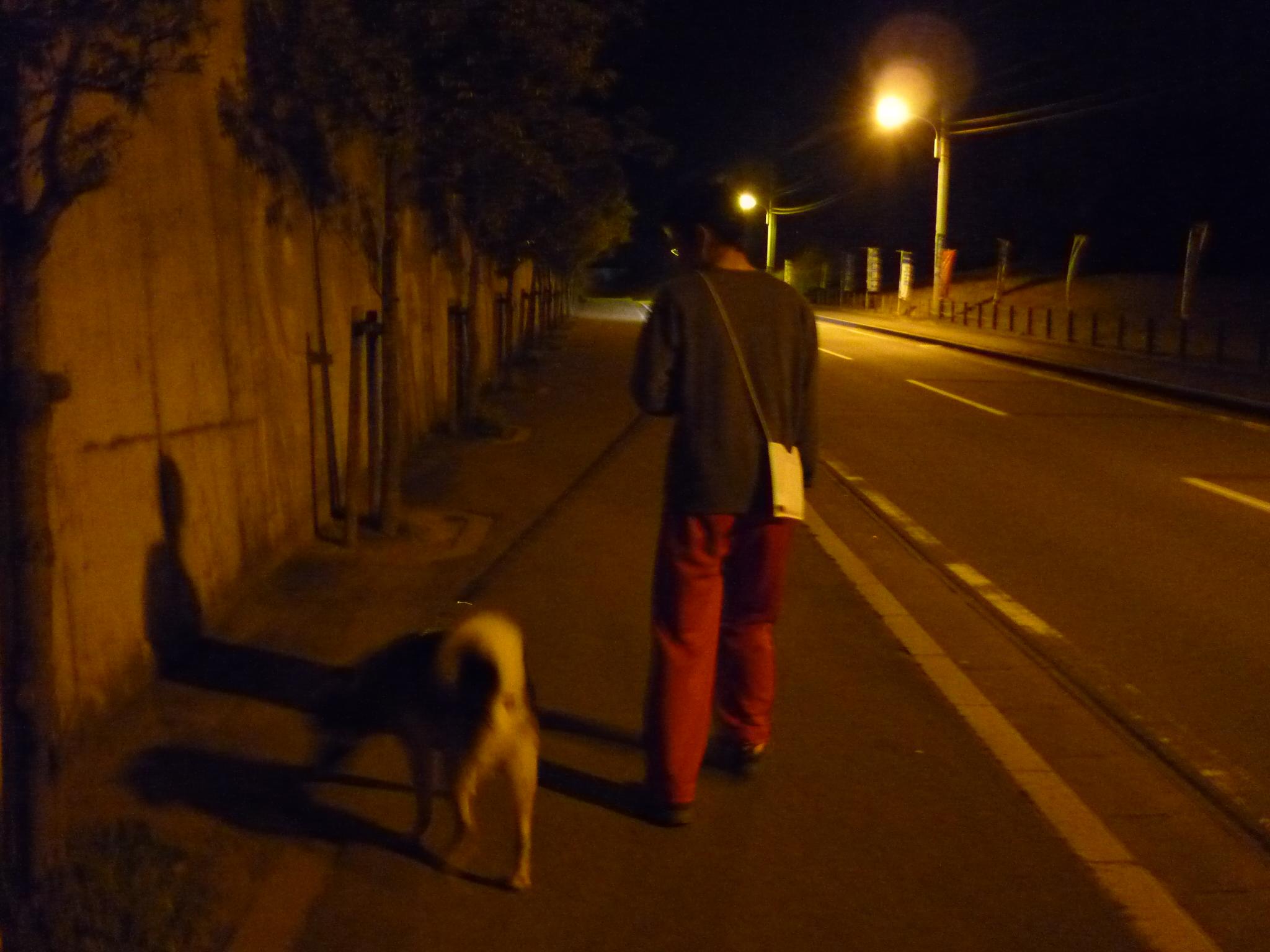 20140403夜散歩07