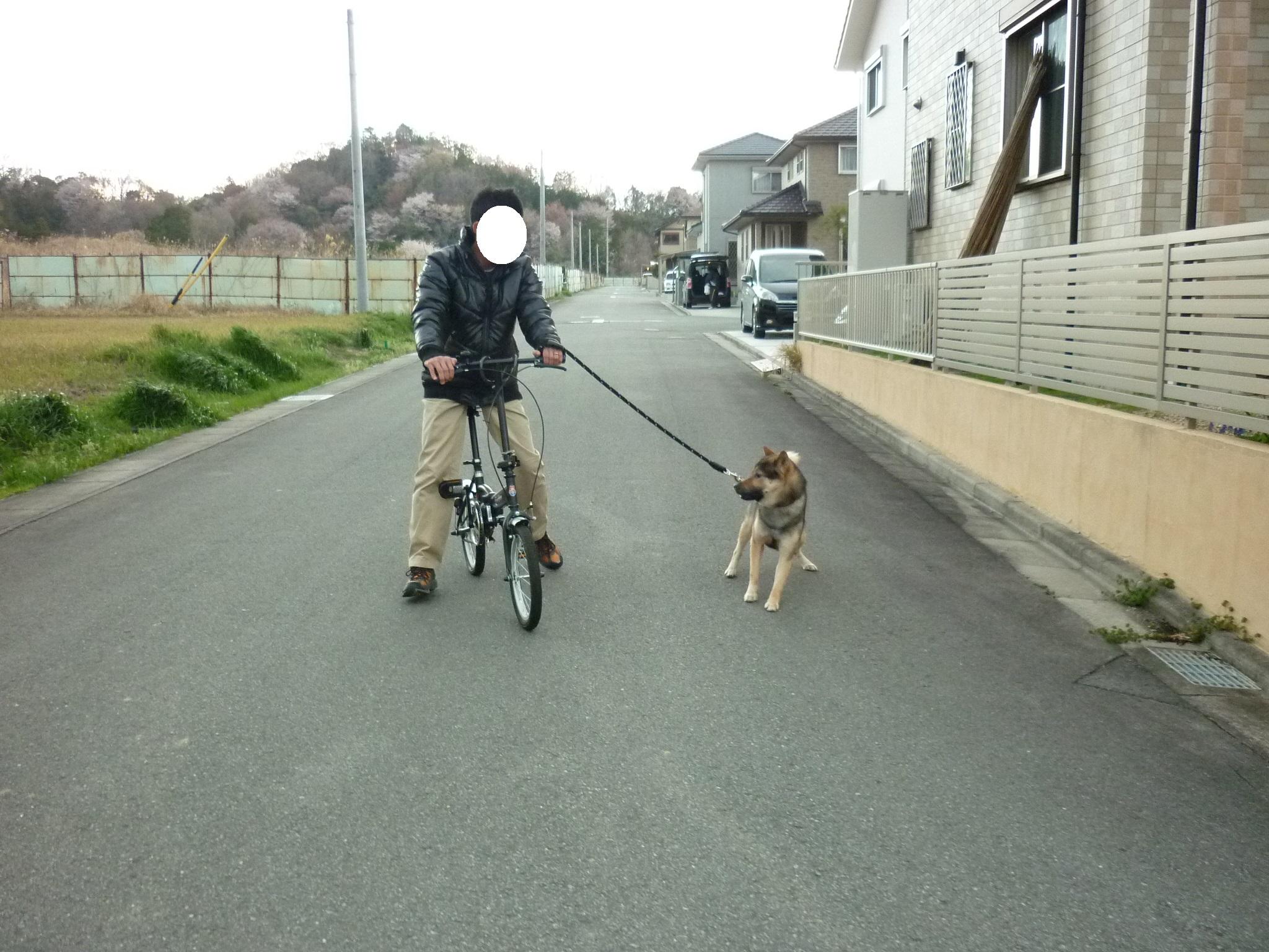 初チャリ散歩02