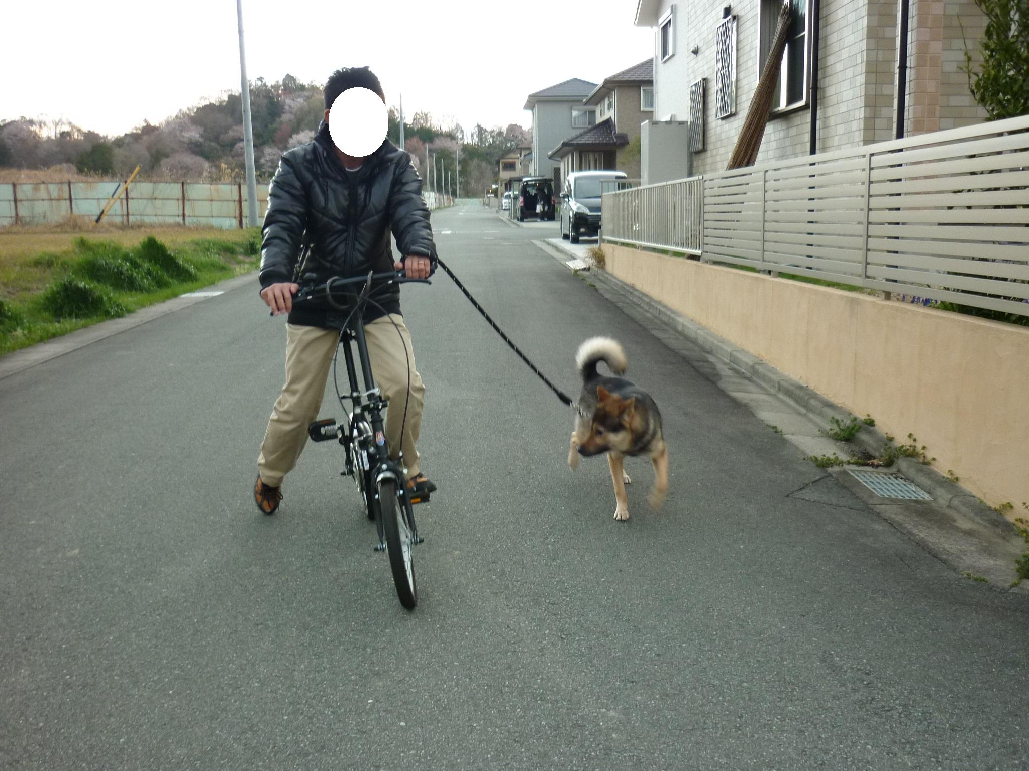 初チャリ散歩03