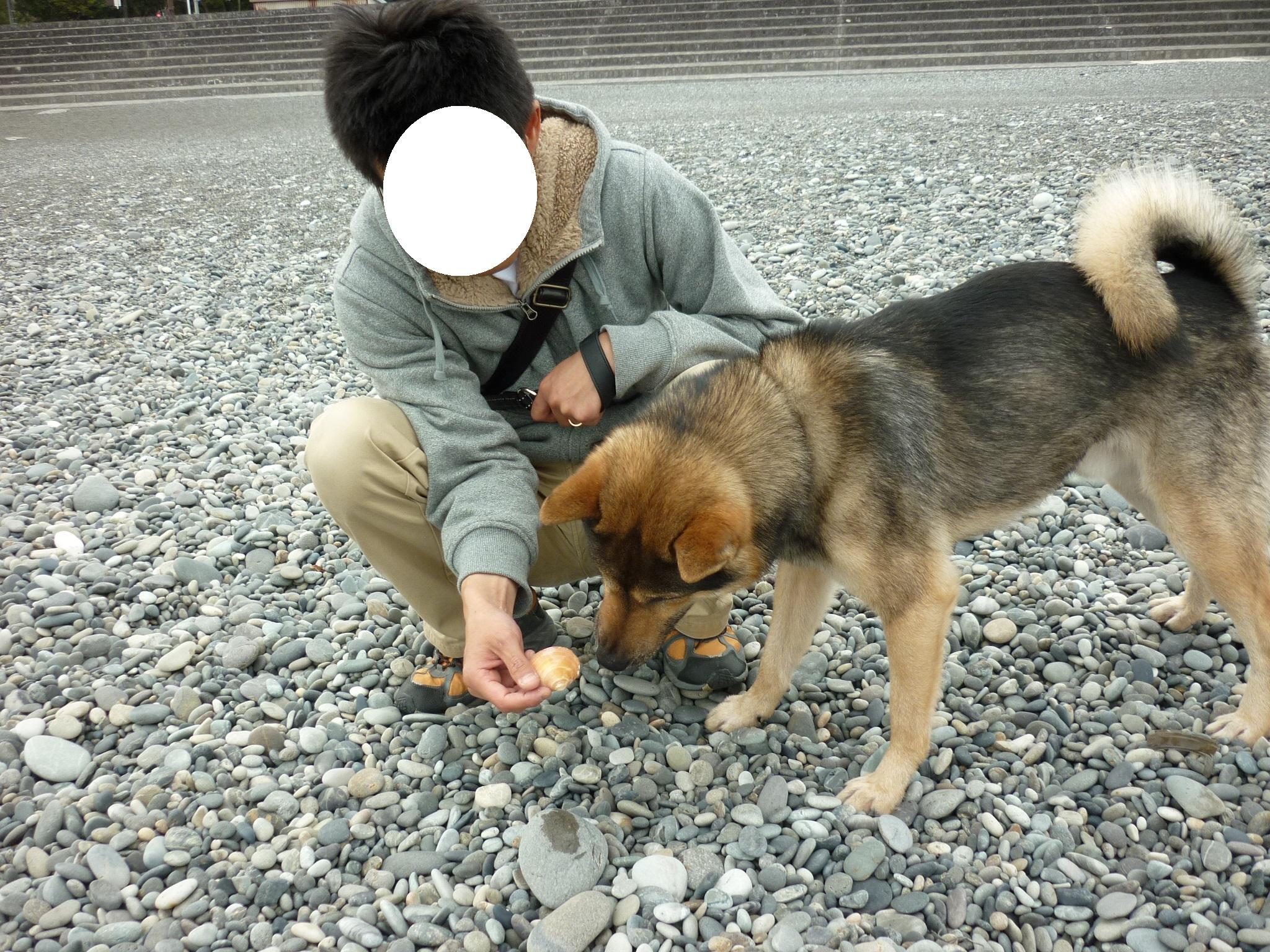 201404熊野22