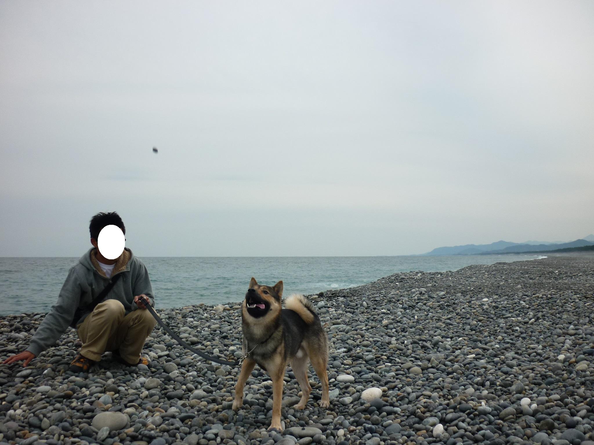 201404熊野27