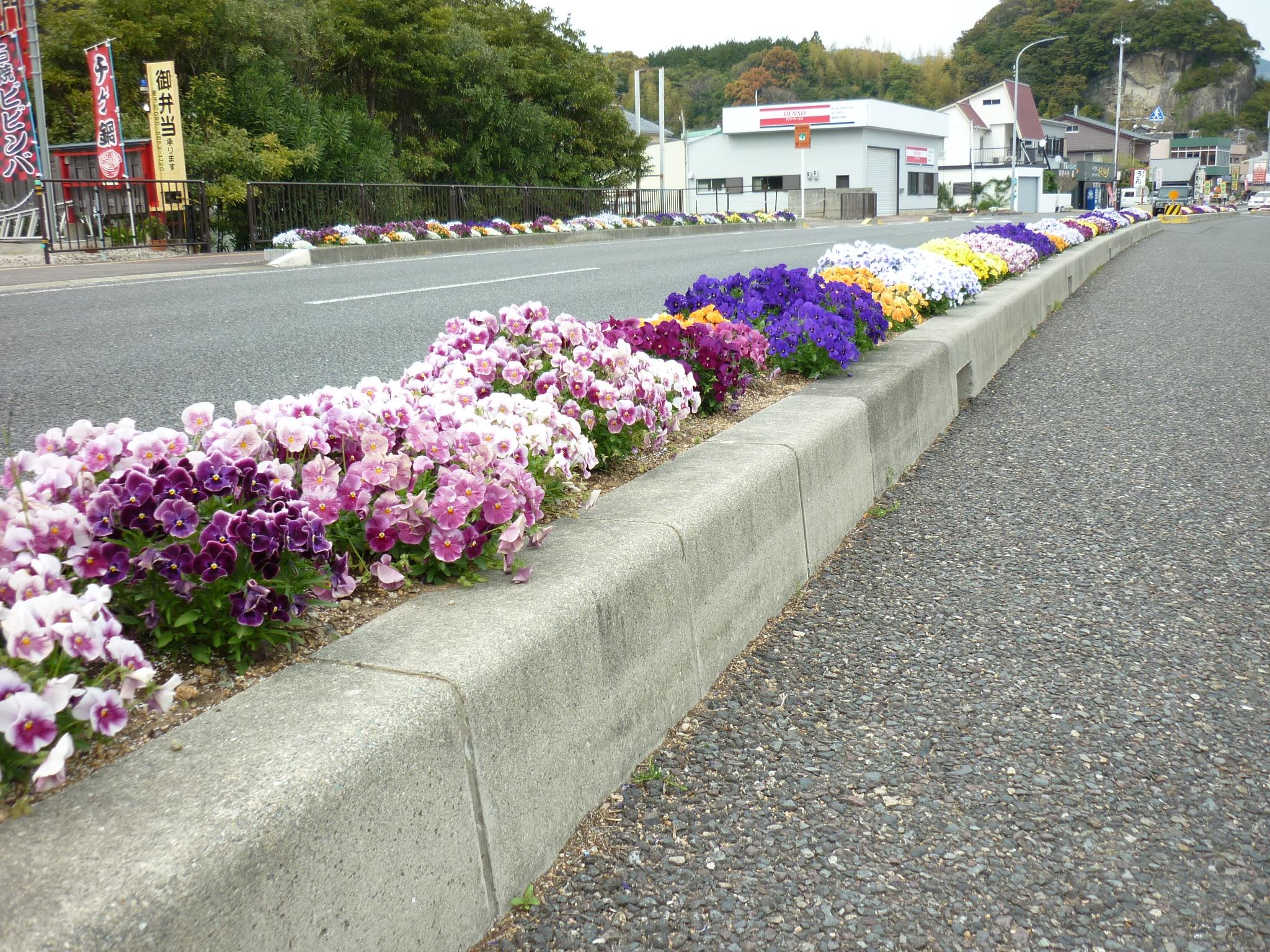 201404熊野39