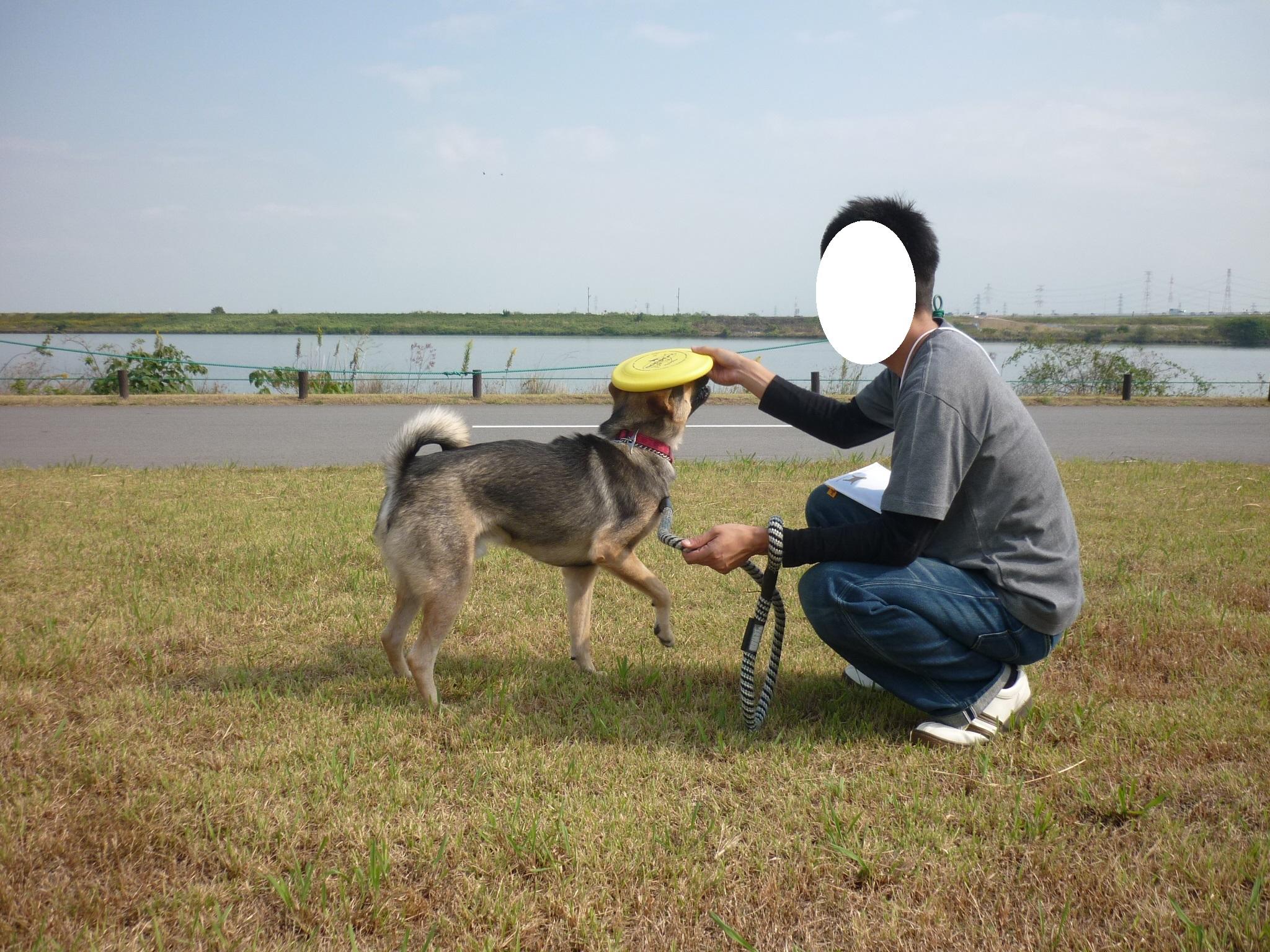 ダイジェスト14-木曽三川公園07