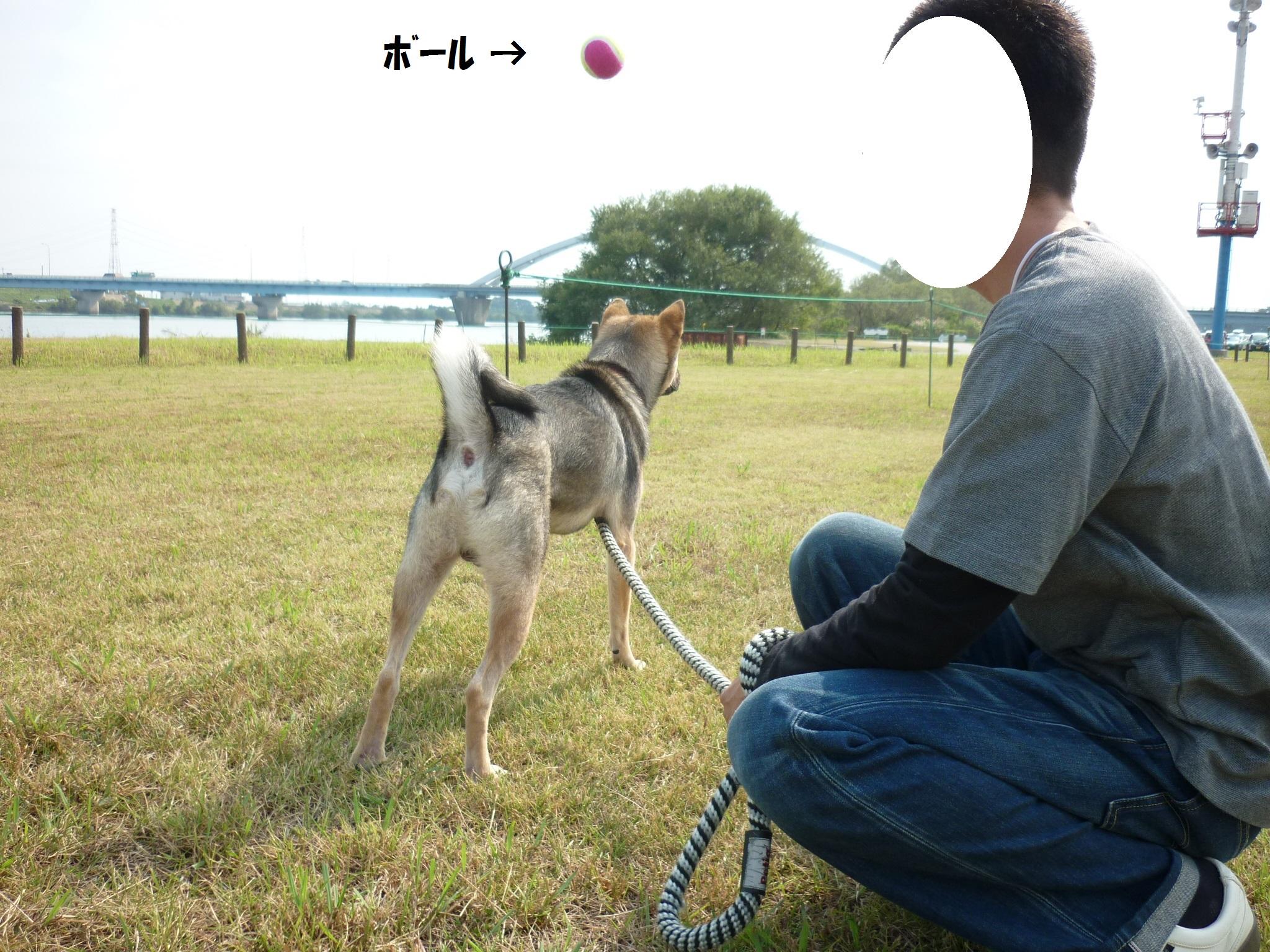 ダイジェスト14-木曽三川公園05