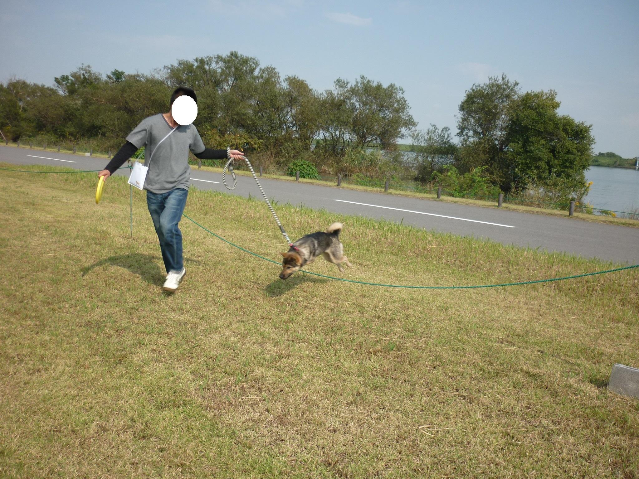 ダイジェスト14-木曽三川公園11