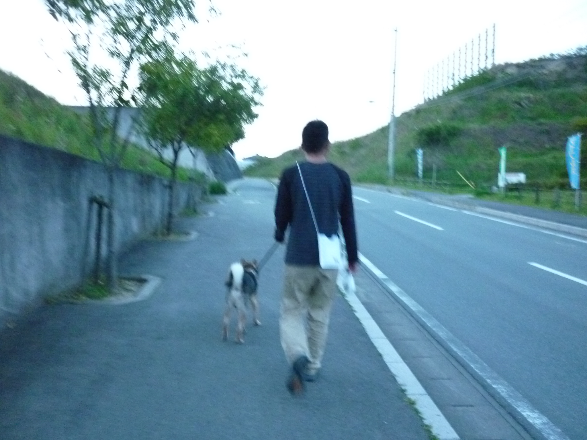 201404-階段バックのぼり08