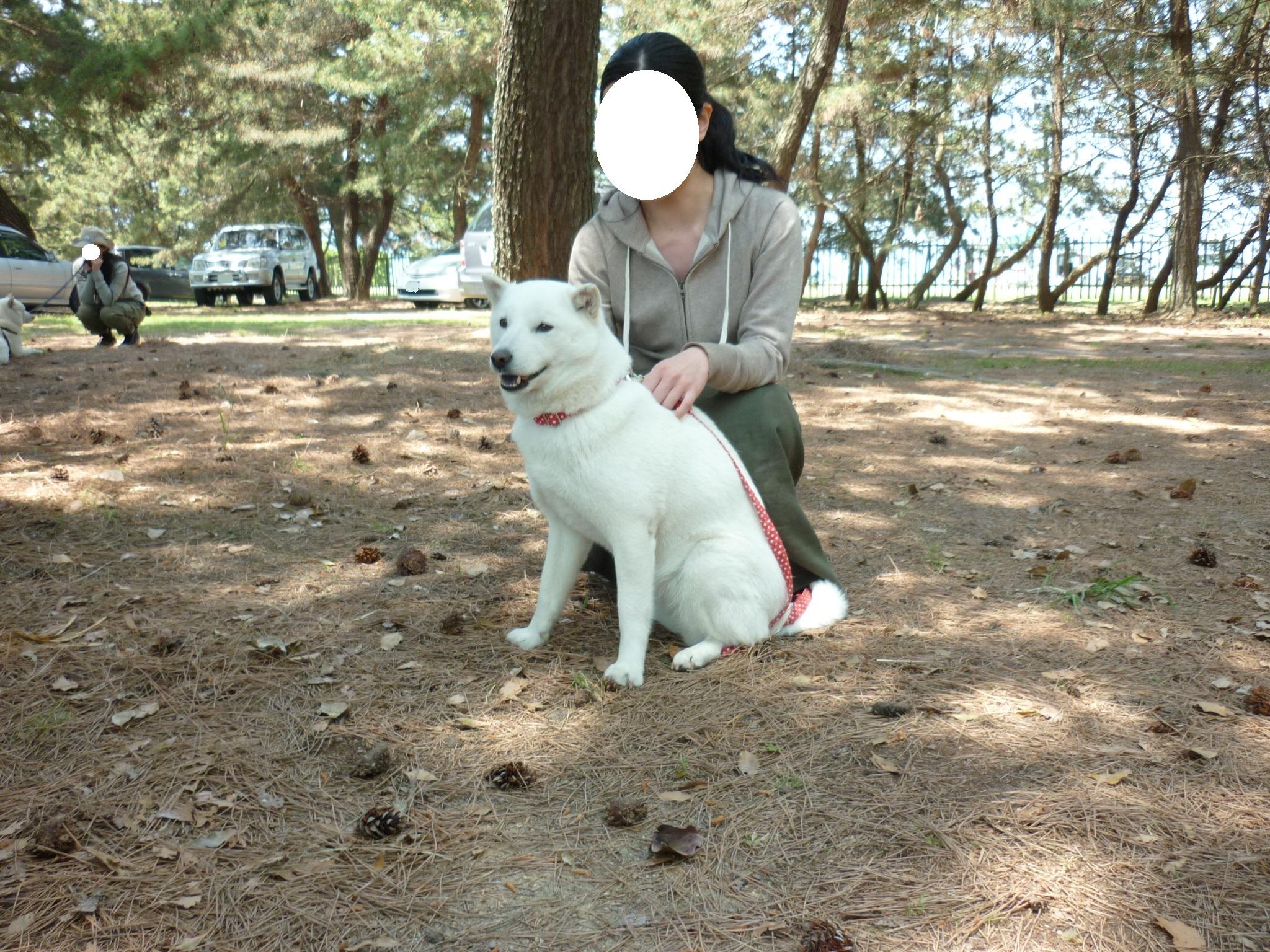 琵琶湖①-14-ゆうかちゃん