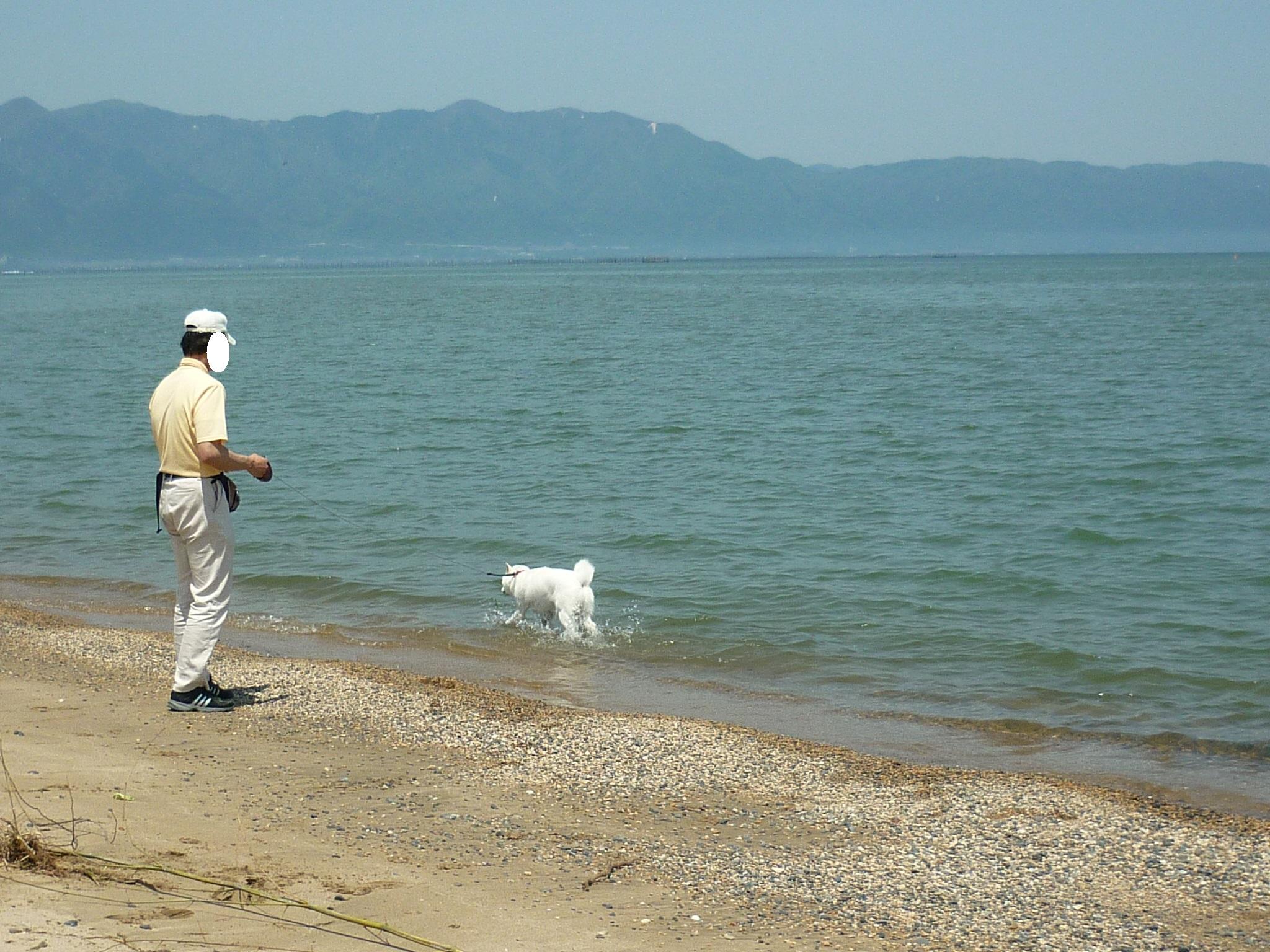 琵琶湖③-05