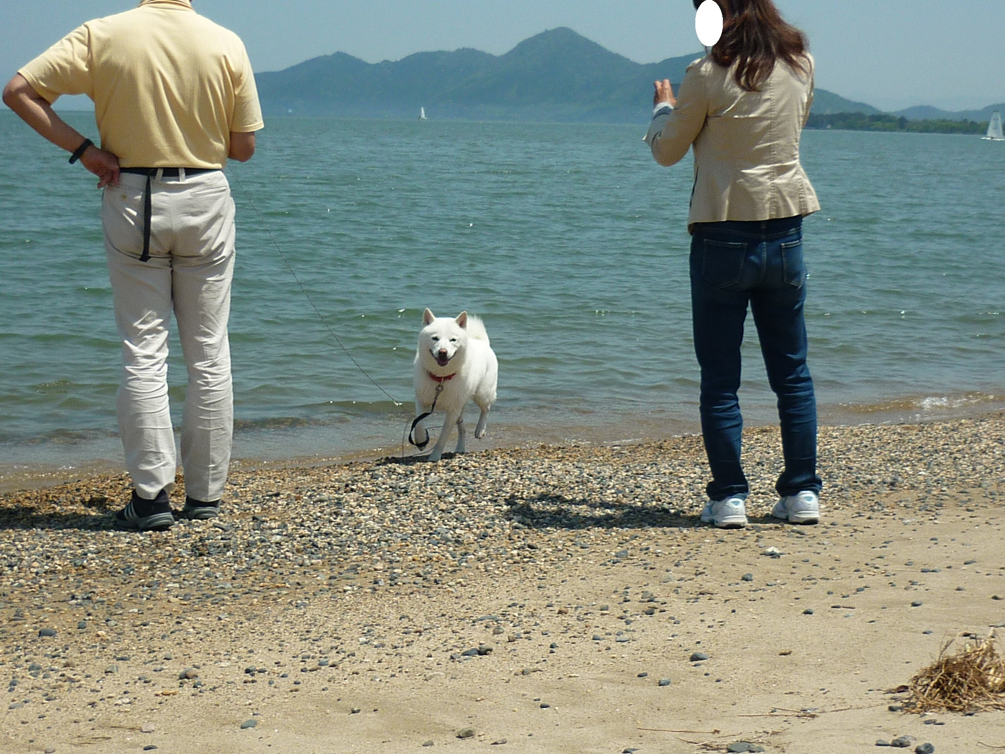 琵琶湖③-04