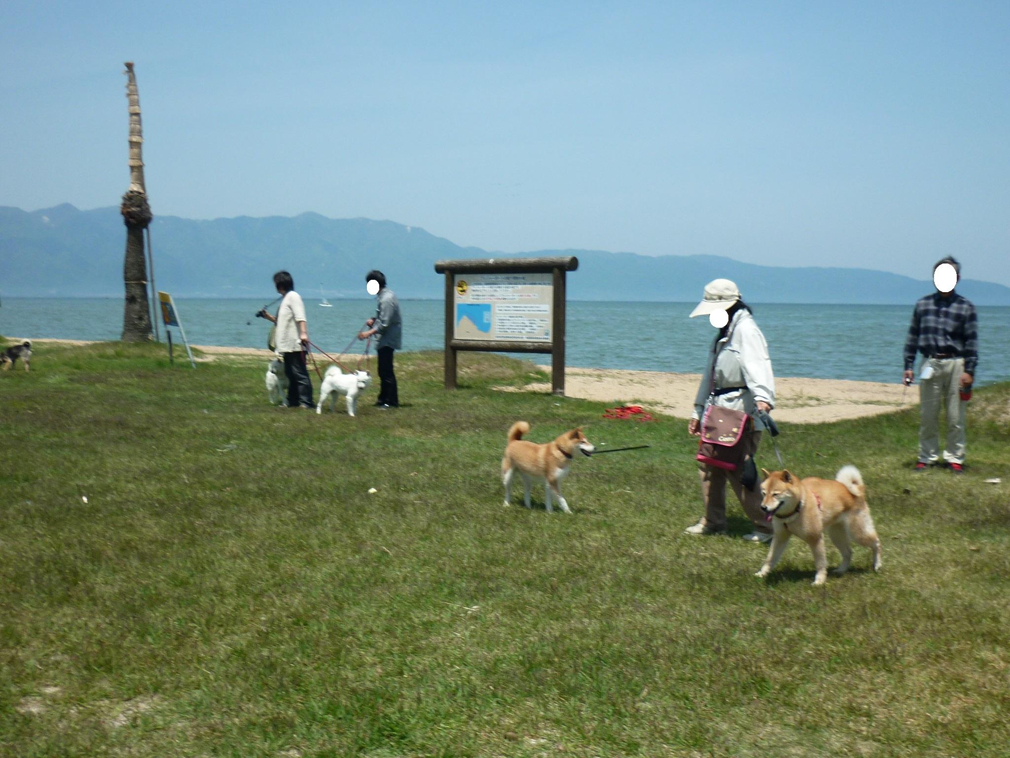 琵琶湖③-18