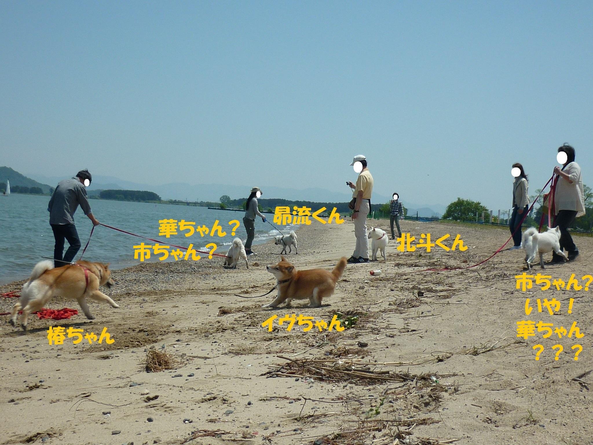 琵琶湖③-01-2