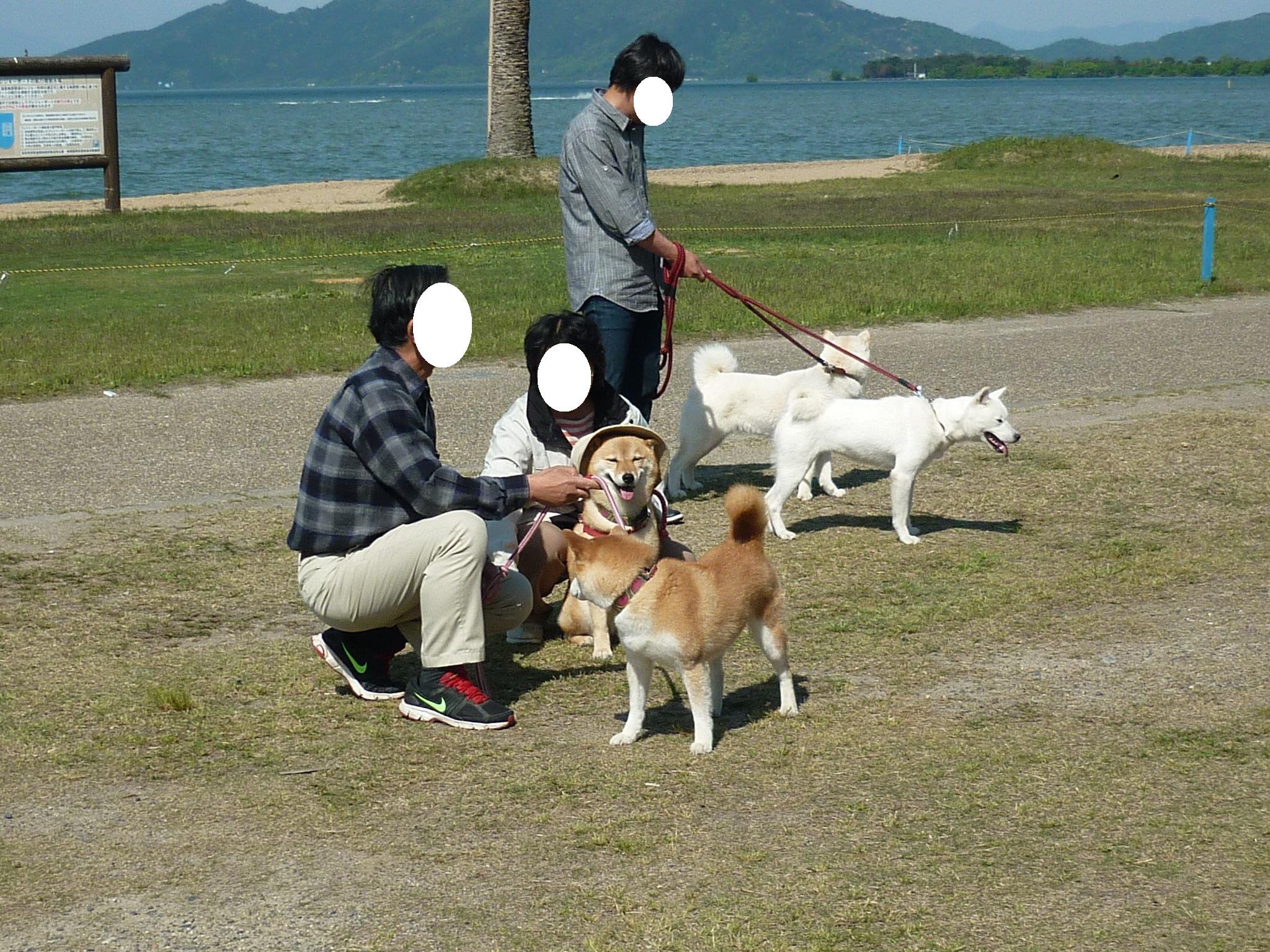 琵琶湖⑤-03