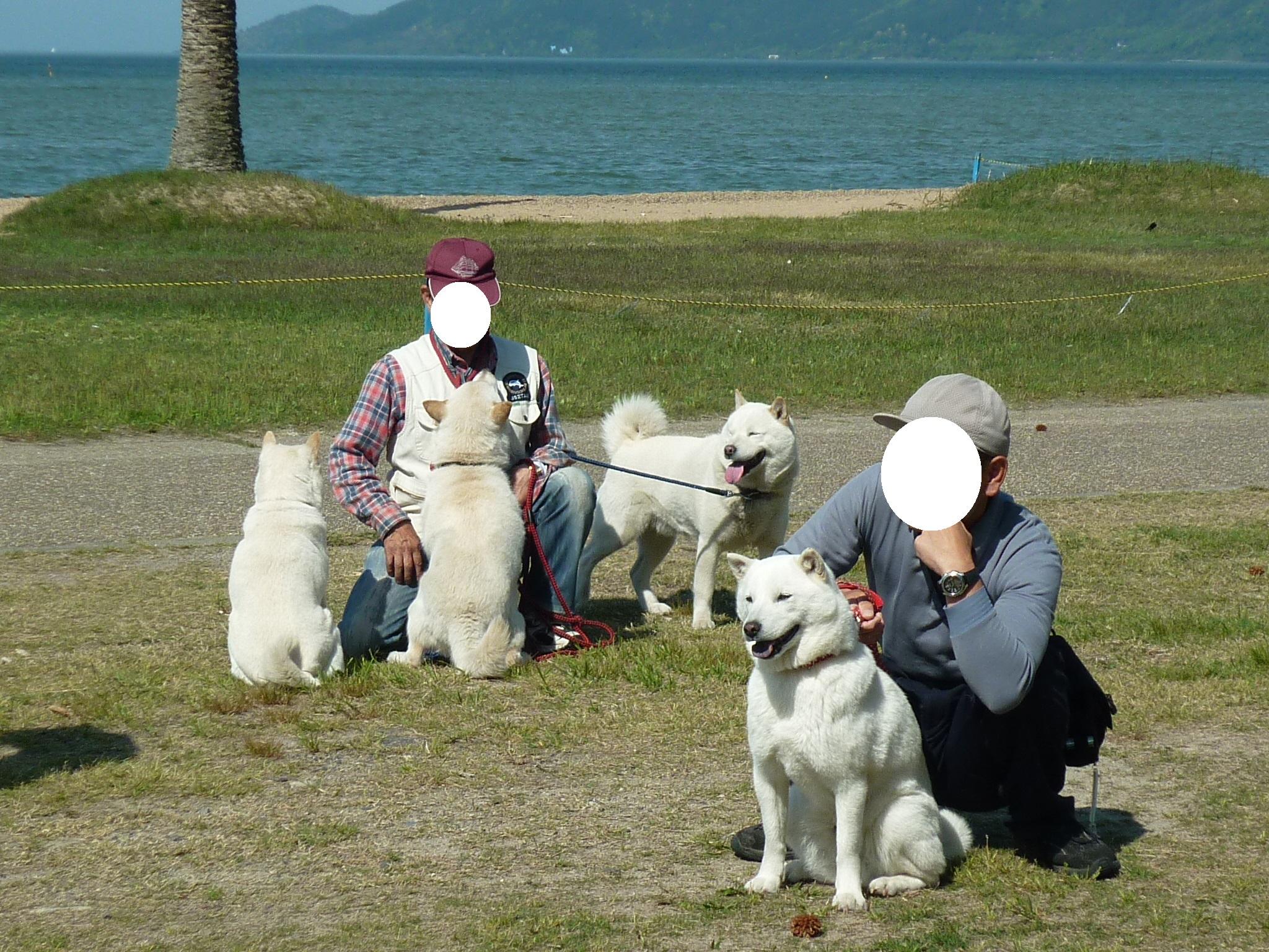 琵琶湖⑤-04