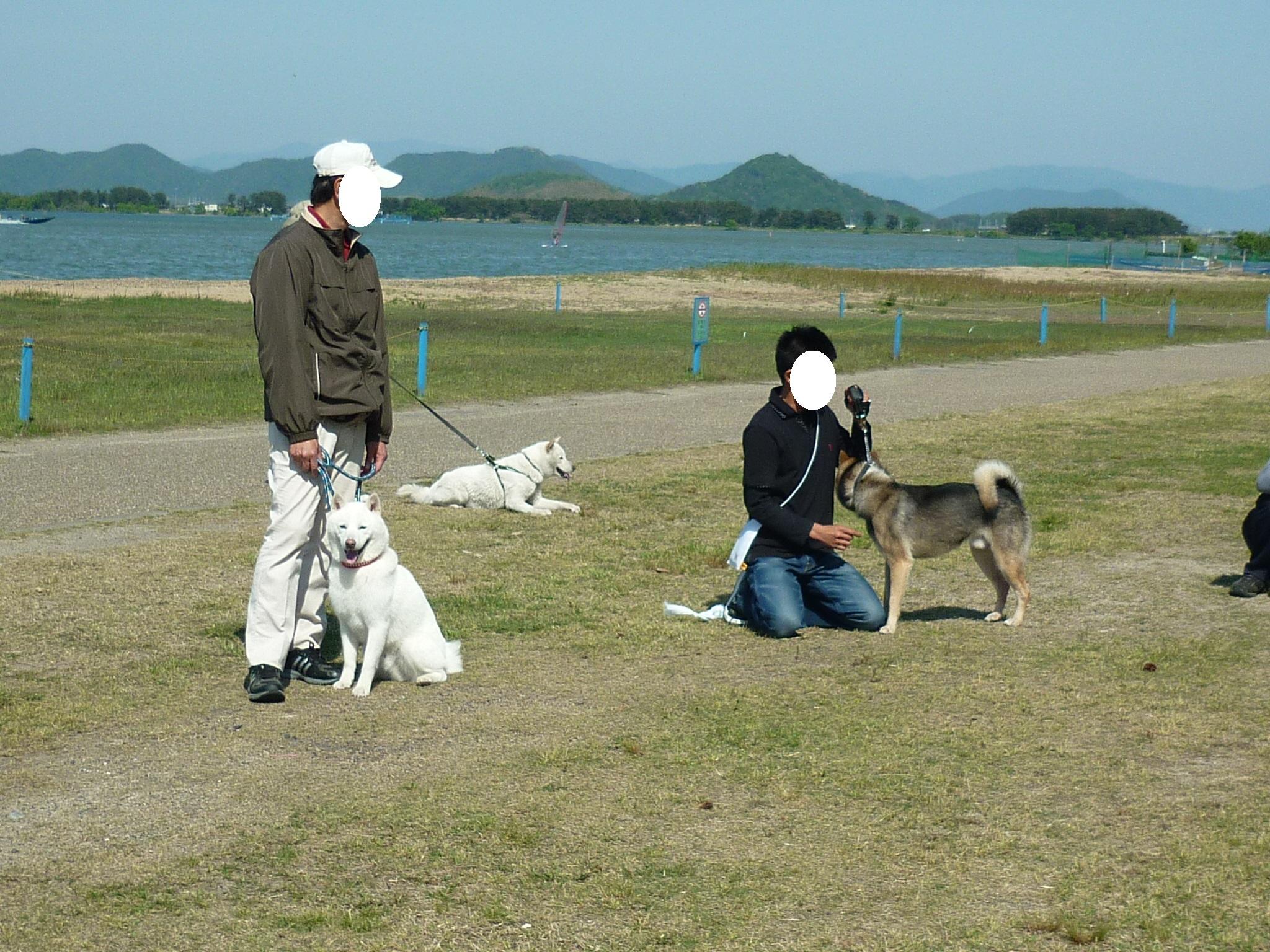 琵琶湖⑤-06