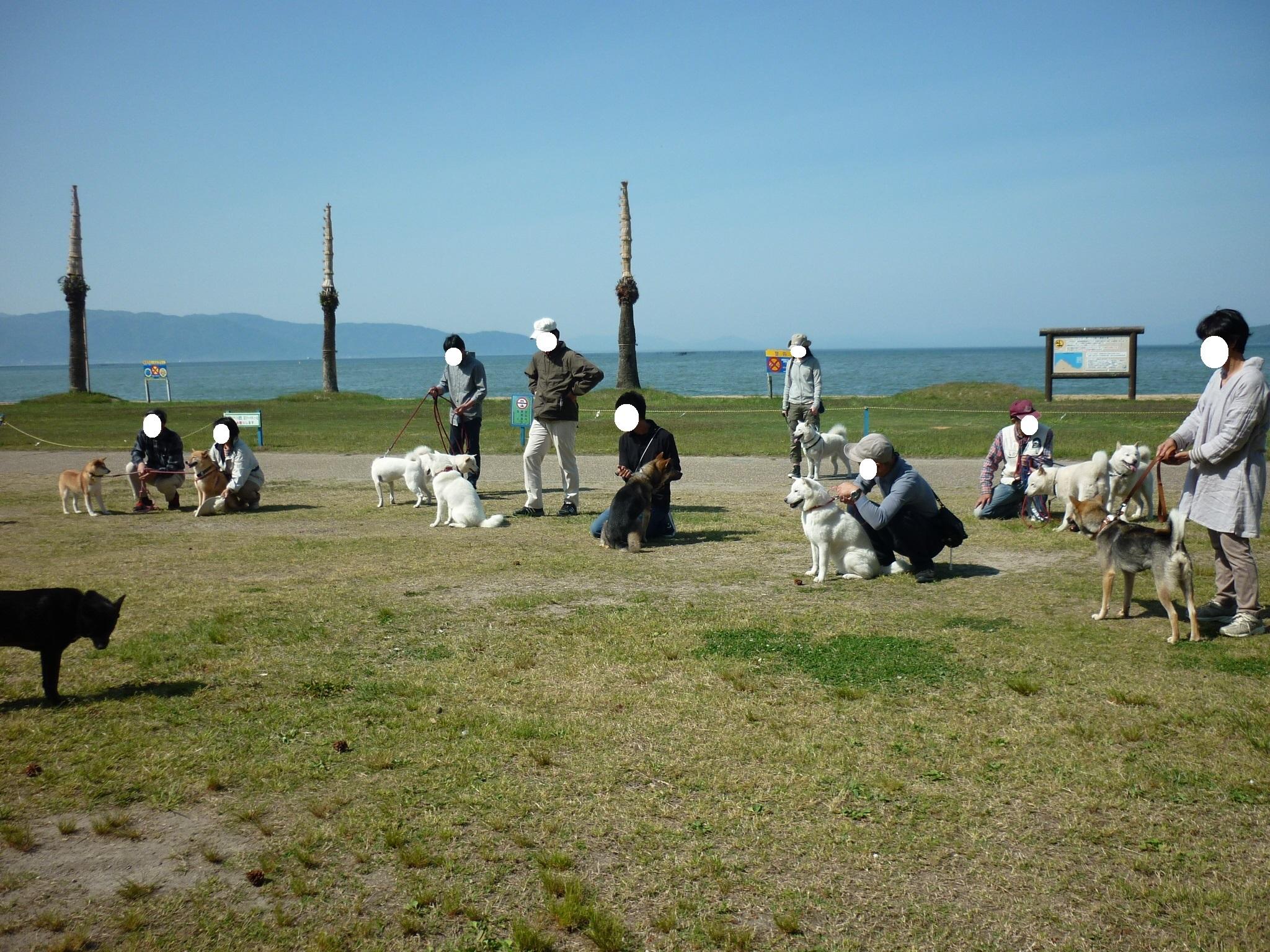 琵琶湖⑤-12