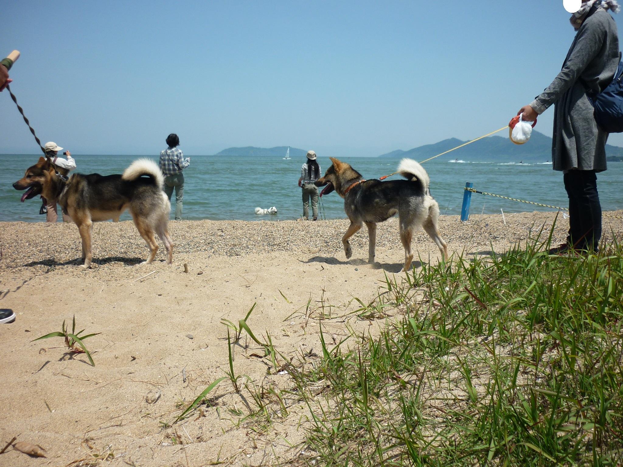 琵琶湖⑥-再会16