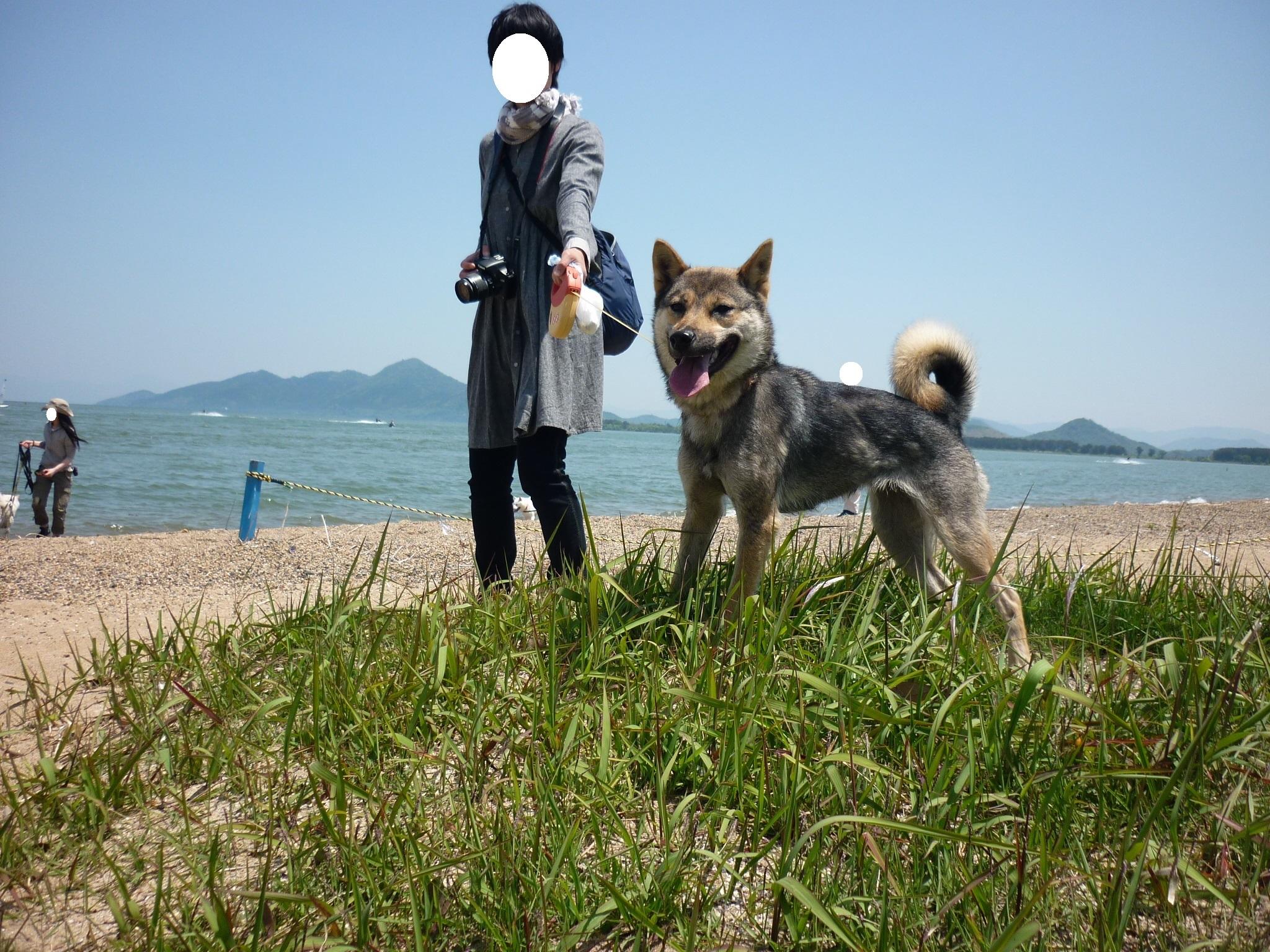 琵琶湖⑥-再会17
